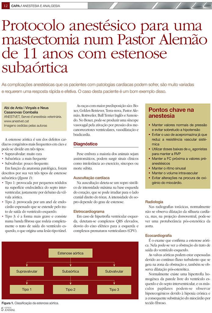 Protocolo anestésico para uma mastectomia num Pastor Alemão de 11 anos com estenose subaórtica